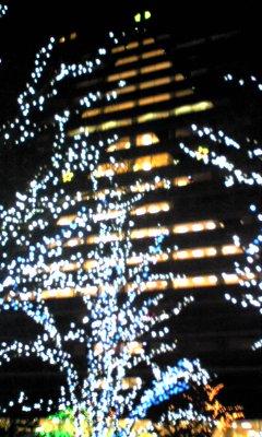 20081220-京セラツリー.jpg